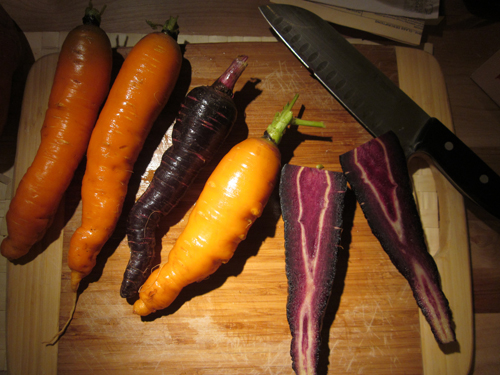Heirloom carrots! The uglier they are, the more tasty they will be!